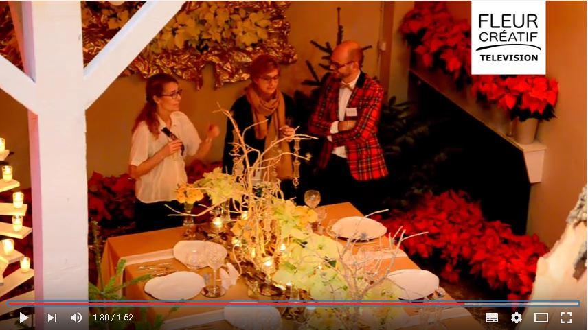 Damien Da Rocha nous présente les poinsettias pour Noël